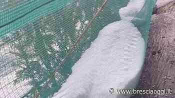 Il cielo riserva grandine e gela il ponte di giugno - Brescia Oggi