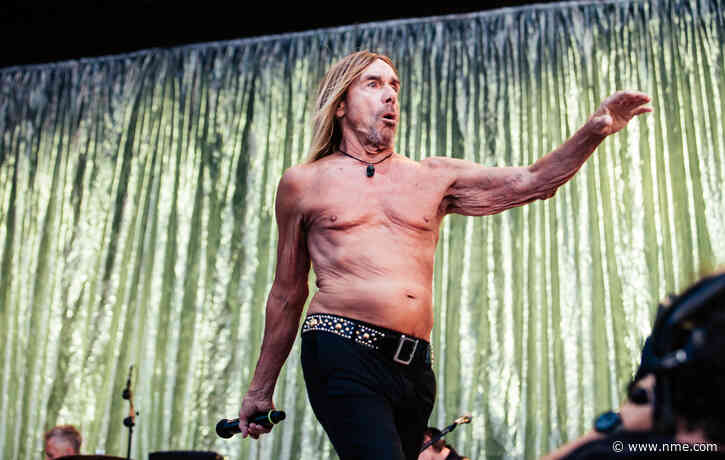 Iggy Pop calls for protection of big cats in Florida
