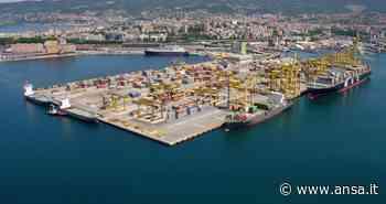 Porti: Anac, decade presidente Autorità Trieste - Friuli V. G. - Agenzia ANSA