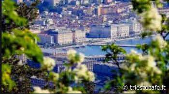 Trieste Cafe Live! giovedì Prefetto, Giorgi e Polidori Trieste Cafe Live! - triestecafe.it