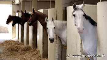 Mios : un prof d'équitation condamné pour agressions sexuelles rachète les écuries de Fongive - France Bleu