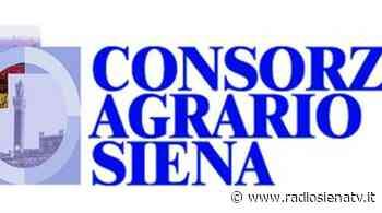 """Il Consorzio Agrario di Siena: """"Nessuna liquidazione, continuità aziendale non in discussione"""" - RadioSienaTv"""