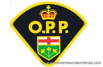 Brockton man in custody after early morning 'situation' - Owen Sound Sun Times
