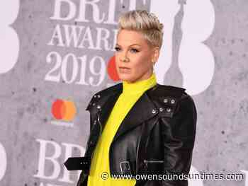 Pink says Trump supporters not real Americans - Owen Sound Sun Times
