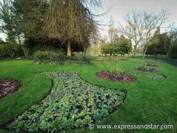 Grass cutting to restart in Sandwell parks - expressandstar.com