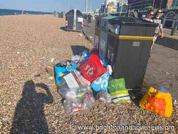 Beach litter patrols start again - Brighton and Hove News