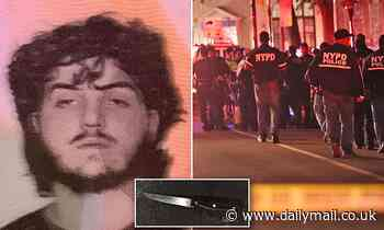 Pictured: Suspect, 20, who 'stabbed cop on anti-looting watch in neck' in Brooklyn