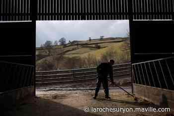 Le suicide, un phénomène ancien chez les agriculteurs - maville.com