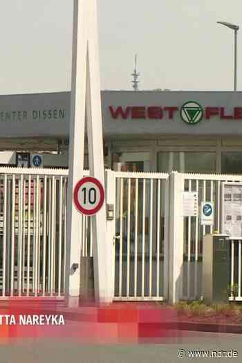 Probebetrieb im Schlachthof in Dissen läuft an - NDR.de