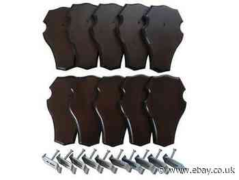 10 X Trophy Shields + Antlers-Clamp Set Deer Antlers New