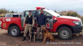 Rincón cuenta con un adiestrador internacional en can funcional - LM Neuquén