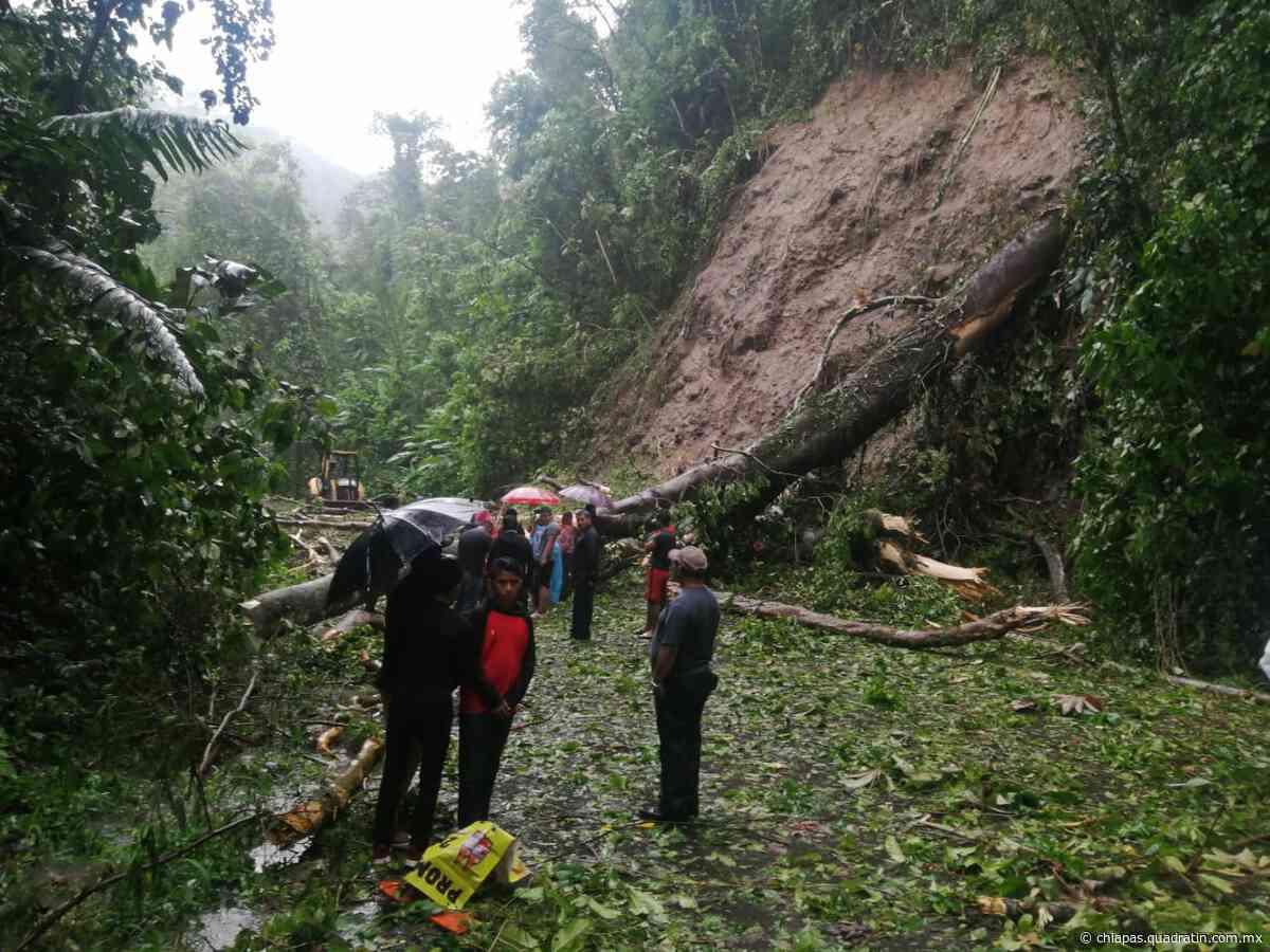 Ayuntamiento de Tapachula atiende deslave en carretera a Nueva Alemania - Quadratín Chiapas