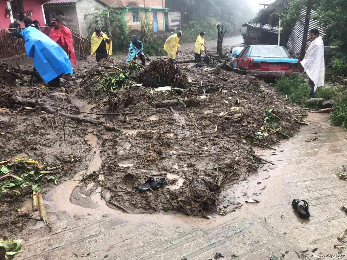 """Afectaciones en zona alta de Tapachula por """"Cristobal"""" - Alerta Chiapas"""