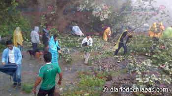 Deslaves obstruyen caminos en Unión Juárez y Tapachula - Diario de Chiapas