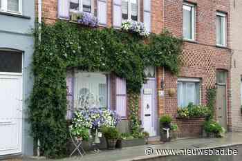 Straks geveltuinen, groenslingers en straattuinen in Zedelge... (Zedelgem) - Het Nieuwsblad