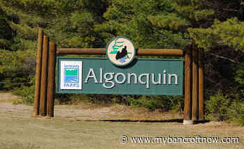 """Algonquin Park sees """"large influx"""" of reservations are re-opening - mybancroftnow.com"""