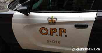 1 dead following head-on collision in Quinte West: OPP - Global News