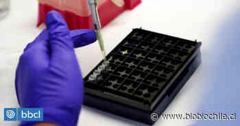 Alcalde de Peñaflor acusa que vecinos esperan resultados de exámenes PCR desde el 13 de mayo - BioBioChile