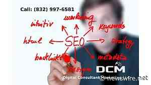 Houston TX Digital Marketing Expert SEO Free Consultation Service Announce - Newswire