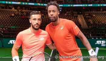 Damir Dzumhur: Gael Monfils is a cool guy, Jack Sock is arrogant - Tennis World USA