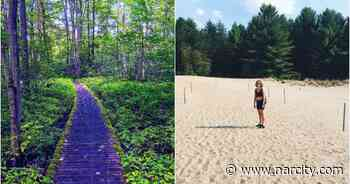 This 3.2 km Forest Trail In Ottawa Leads To Hidden Golden Sand Dunes - Narcity Canada