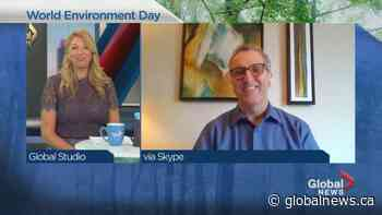Montreal plays digital host to World Environment Day