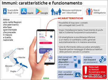 Immuni: accuse di sessismo, cambiano icone per la App - Cronaca - Agenzia ANSA
