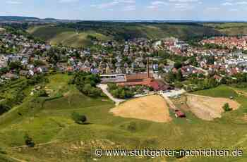 Ärger um die Lehmgrube in Besigheim - Keine Bauarbeiten wegen Wildbienen - Stuttgarter Nachrichten