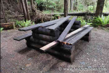 North Island recreation camping site closed due to vandalism - Saanich News