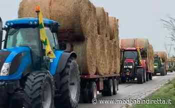 Bomporto, incendio in azienda agricola: i colleghi portano il fieno per le mucche. VIDEO - modenaindiretta.it
