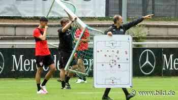 Sonntag muss gegen Osnabrück ein Sieg her - Sekt oder Selters! Pellegrinos Matchplan - BILD