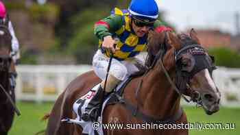 Caloundra's top trainer has triple threat for JJ Atkins - Sunshine Coast Daily