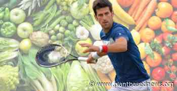 Plant-Based Ace Novak Djokovic Reveals What He Eats In A Day - Plant Based News