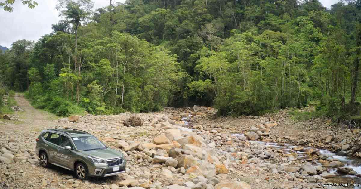 Subaru Costa Rica crea paquetes todo incluido con incentivos de financiamiento - Periódico La República (Costa Rica)