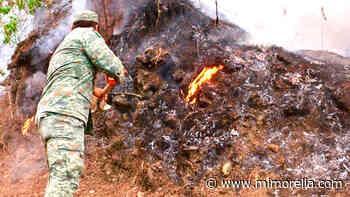Sofocan incendio en Uruapan en el área de montaña del Parque Nacional - MiMorelia.com