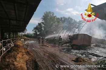 Fiamme nella notte a Castenedolo: distrutto un fienile - Giornale di Brescia