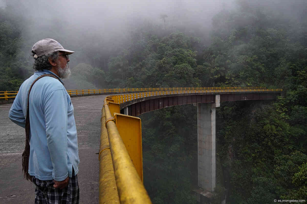 Variante San Francisco - Mocoa: la riesgosa e interminable carretera en la selva de Colombia | ADELANTO - Mongabay en Español