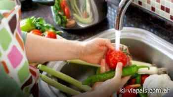 Cresta dictará un Curso de Manipulación Segura de Alimentos - Vía País