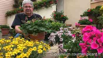 La mairie de Friville-Escarbotin lance son premier concours de maisons et balcons fleuris - Courrier picard
