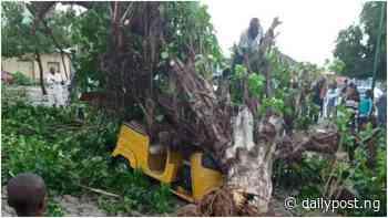 Rainstorm wreaks havoc in Minna, destroys property worth millions of naira - Daily Post Nigeria