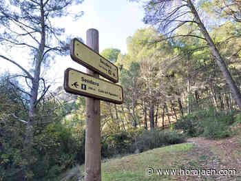 Verano de actividades en la naturaleza en Bedmar y Garcíez - HoraJaén