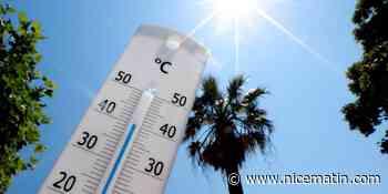 Des pics à 40° attendus, l'été risque encore d'être très très chaud sur la Côte d'Azur