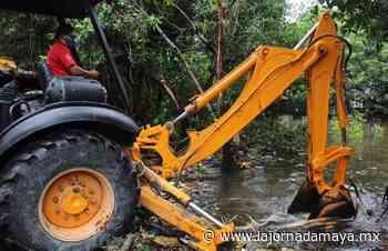 Alcalde de Progreso supervisa trabajos de desazolve en zona de la ciénaga - La Jornada Maya