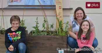 Urbane Oasen: Insektenparadiese mitten in Ellwangen - Schwäbische