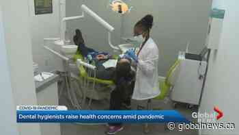 Coronavirus: Divide over safety at Ontario dental offices | Watch News Videos Online - Globalnews.ca