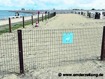 Zaun sperrt Hunde vom Bad in der Nordsee aus - Emder Zeitung