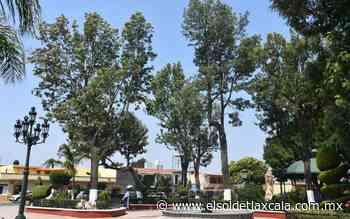 Podarán árboles en el centro de Tlaxco - El Sol de Tlaxcala