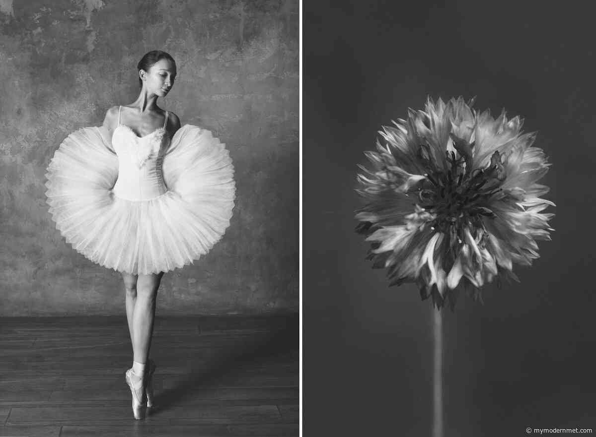 Photographer Shows Connection Between Ballet and Blooming Flowers - My Modern Met
