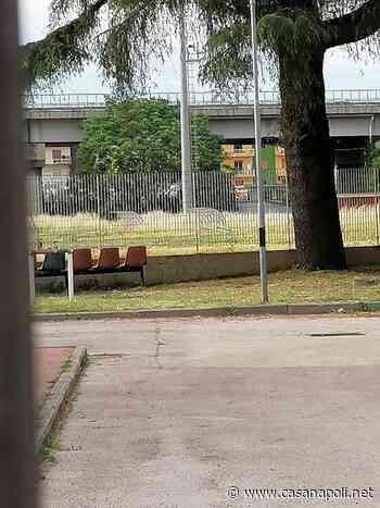 Casavatore: degrado al Centro Polisportivo - casanapoli.net