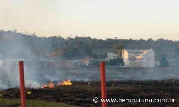 Número de incêndios ambientais em Campina Grande do Sul já é oito vezes maior que o registrado em 2019 - Bem Paraná